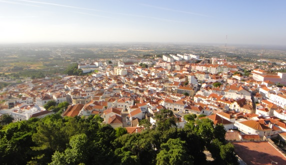 Estudo de soluções de transporte flexível em território periurbano no concelho de Palmela